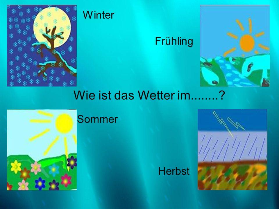 Winter Frühling Sommer Herbst Wie ist das Wetter im........?