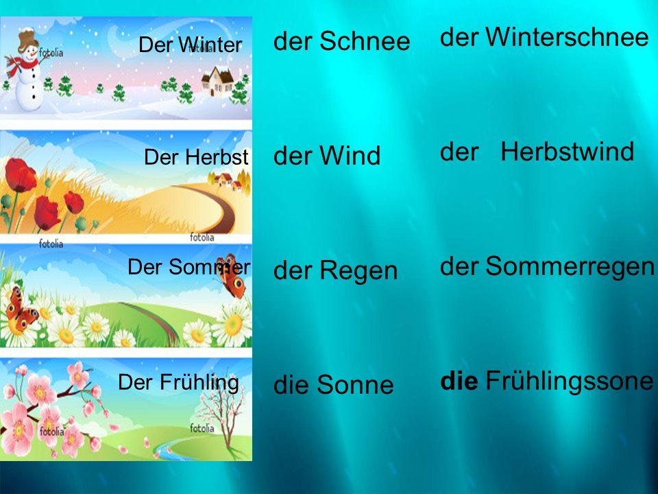 Der Winter der Schnee der Wind der Regen die Sonne der Winterschnee der Herbstwind der Sommerregen die Frühlingssone Der Winter Der Herbst Der Sommer