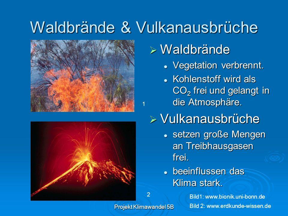 Projekt Klimawandel 5B Waldbrände & Vulkanausbrüche Waldbrände Waldbrände Vegetation verbrennt. Kohlenstoff wird als CO 2 frei und gelangt in die Atmo