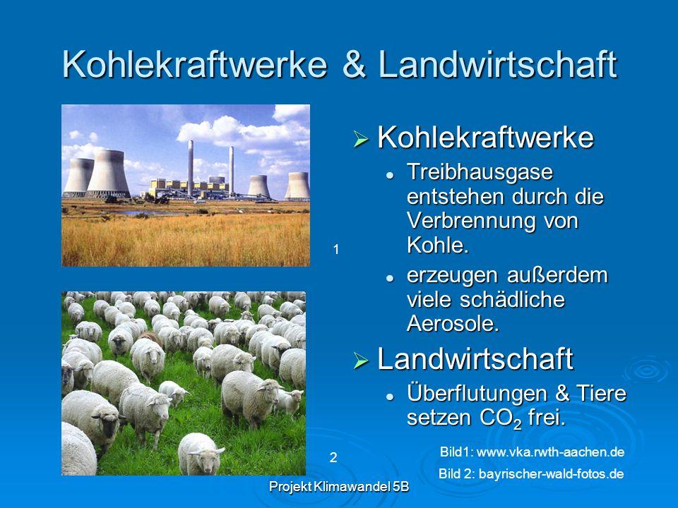 Projekt Klimawandel 5B Kohlekraftwerke & Landwirtschaft Kohlekraftwerke Kohlekraftwerke Treibhausgase entstehen durch die Verbrennung von Kohle. erzeu