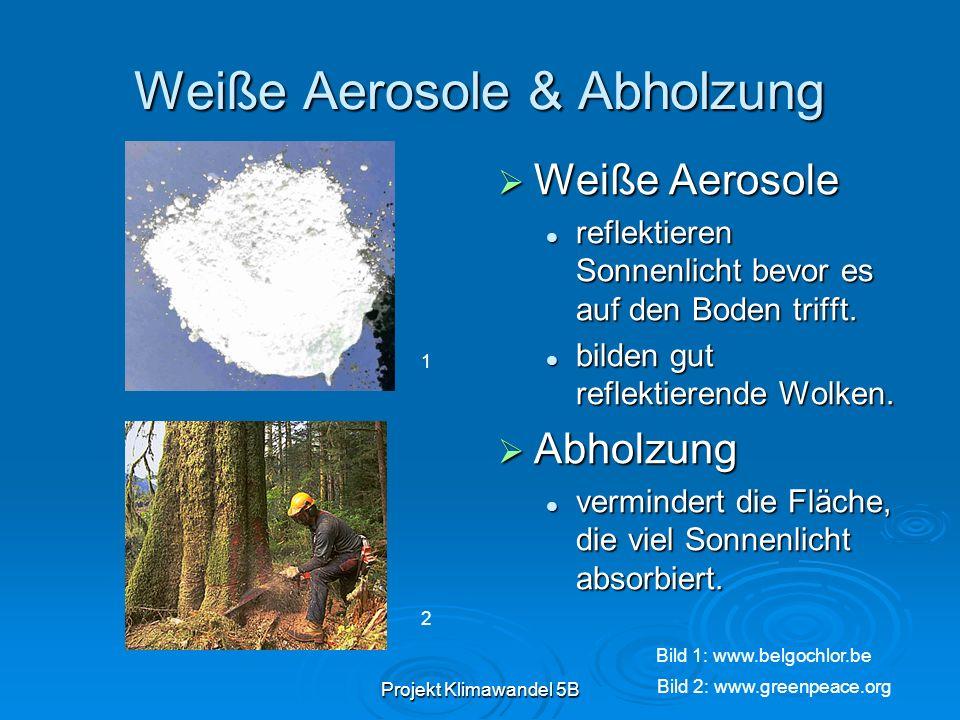 Projekt Klimawandel 5B Weiße Aerosole & Abholzung Weiße Aerosole Weiße Aerosole reflektieren Sonnenlicht bevor es auf den Boden trifft. bilden gut ref