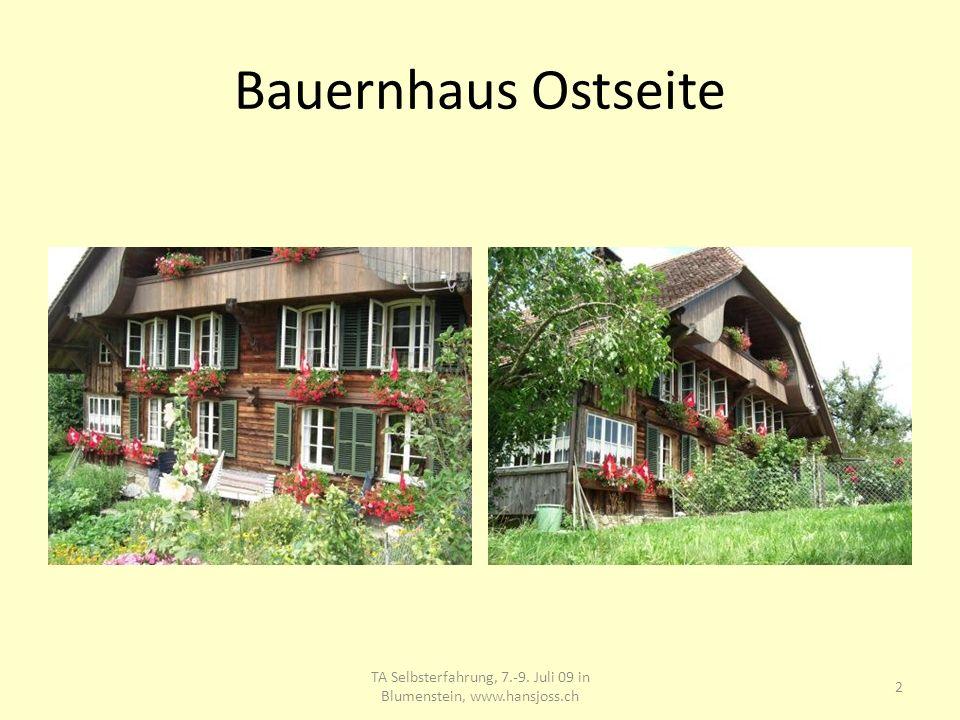 Bauernhaus Ostseite TA Selbsterfahrung, 7.-9. Juli 09 in Blumenstein, www.hansjoss.ch 2