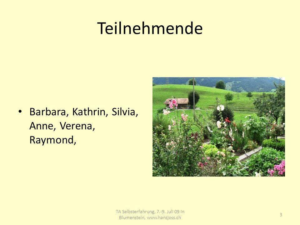 Teilnehmende Barbara, Kathrin, Silvia, Anne, Verena, Raymond, TA Selbsterfahrung, 7.-9. Juli 09 in Blumenstein, www.hansjoss.ch 3