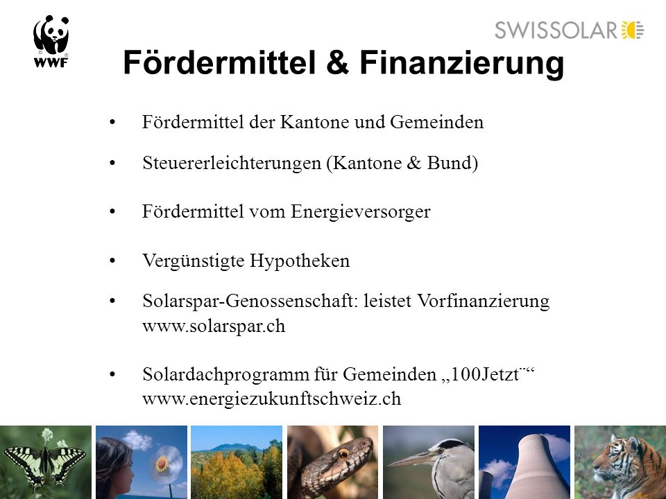 Fördermittel & Finanzierung Fördermittel der Kantone und Gemeinden Steuererleichterungen (Kantone & Bund) Fördermittel vom Energieversorger Vergünstig
