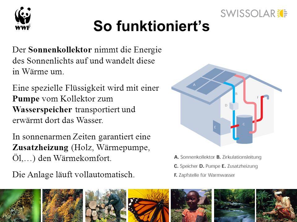So funktionierts Der Sonnenkollektor nimmt die Energie des Sonnenlichts auf und wandelt diese in Wärme um. Eine spezielle Flüssigkeit wird mit einer P