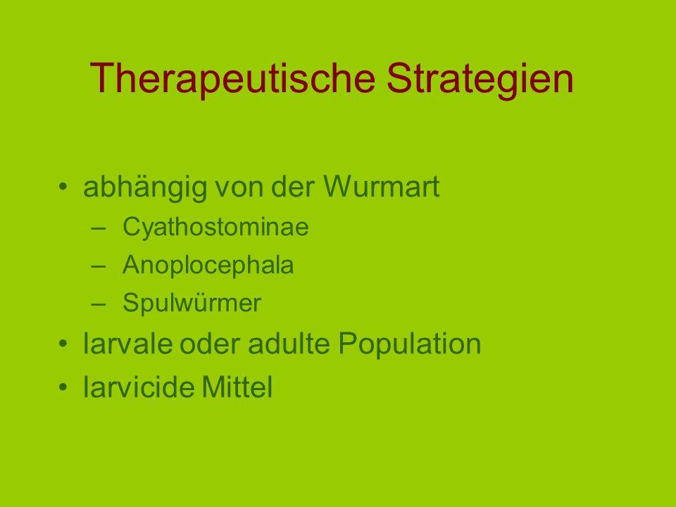 Therapeutische Strategien abhängig von der Wurmart –Cyathostominae –Anoplocephala –Spulwürmer larvale oder adulte Population larvicide Mittel