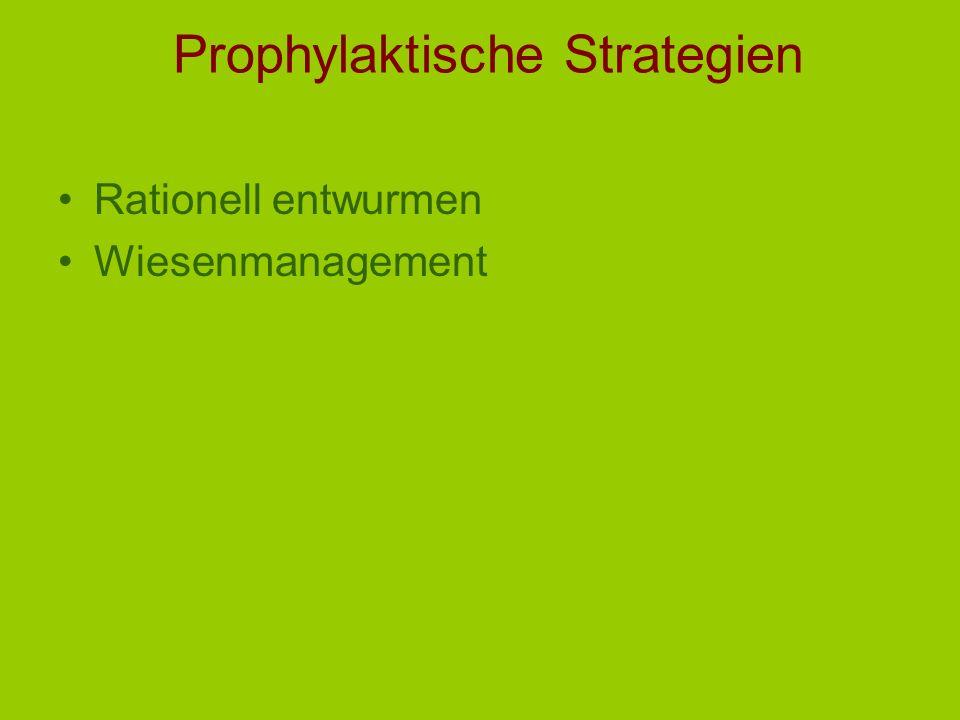 Prophylaktische Strategien Rationell entwurmen Wiesenmanagement