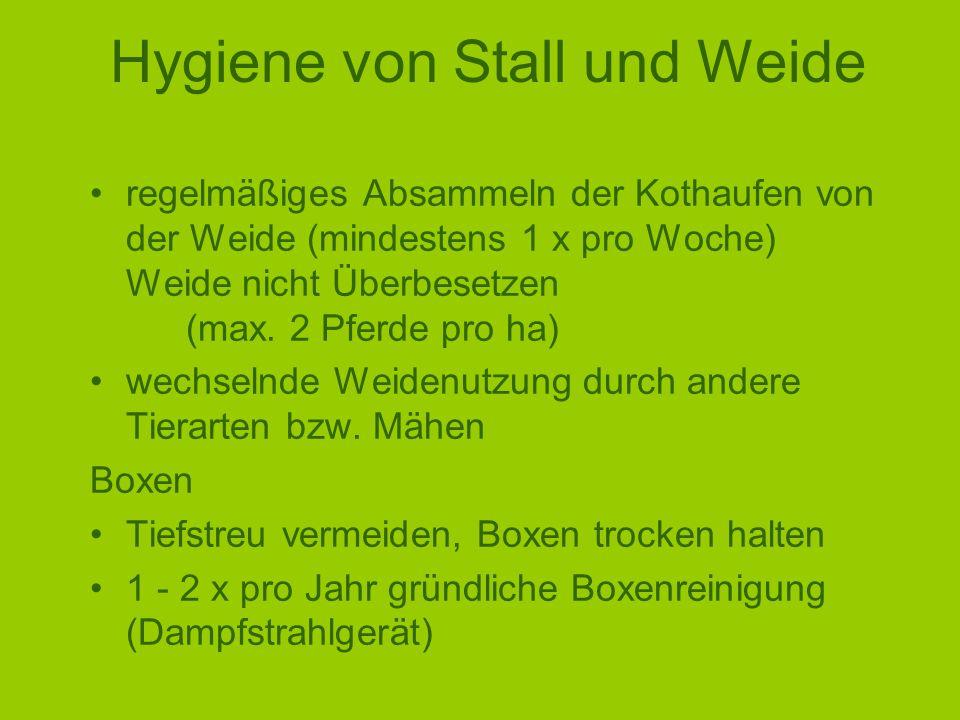 Hygiene von Stall und Weide regelmäßiges Absammeln der Kothaufen von der Weide (mindestens 1 x pro Woche) Weide nicht Überbesetzen (max.