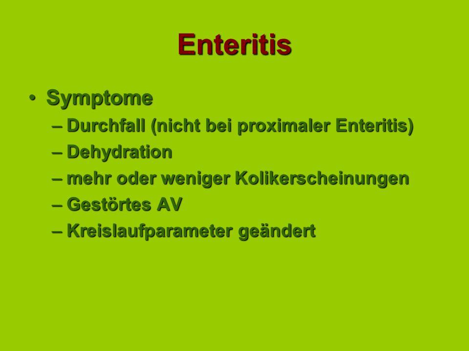 Enteritis SymptomeSymptome –Durchfall (nicht bei proximaler Enteritis) –Dehydration –mehr oder weniger Kolikerscheinungen –Gestörtes AV –Kreislaufparameter geändert