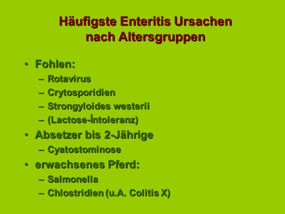 Häufigste Enteritis Ursachen nach Altersgruppen Fohlen:Fohlen: –Rotavirus –Crytosporidien –Strongyloides westerii –(Lactose-Íntoleranz) Absetzer bis 2-JährigeAbsetzer bis 2-Jährige –Cyatostominose erwachsenes Pferd:erwachsenes Pferd: –Salmonella –Chlostridien (u.A.