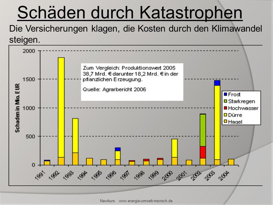 Schäden durch Katastrophen Nawikurs www.energie-umwelt-mensch.de Die Versicherungen klagen, die Kosten durch den Klimawandel steigen.