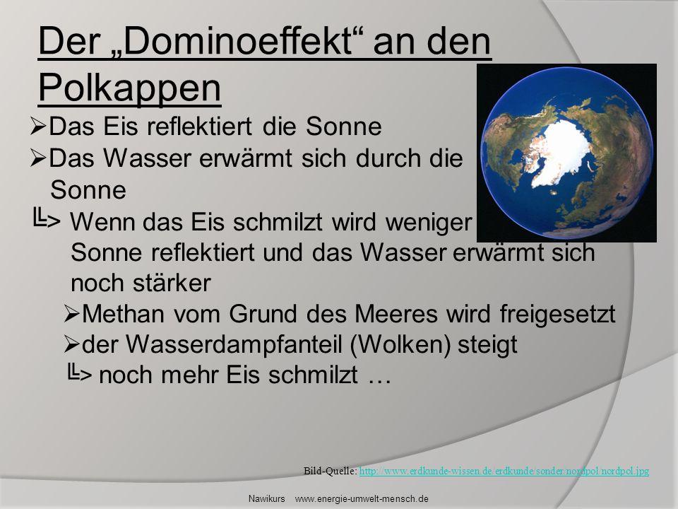 Der Dominoeffekt an den Polkappen Nawikurs www.energie-umwelt-mensch.de Das Eis reflektiert die Sonne Das Wasser erwärmt sich durch die Sonne > Wenn d