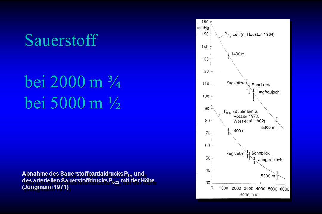 Sauerstoff bei 2000 m ¾ bei 5000 m ½ Abnahme des Sauerstoffpartialdrucks P O2 und des arteriellen Sauerstoffdrucks P aO2 mit der Höhe (Jungmann 1971)