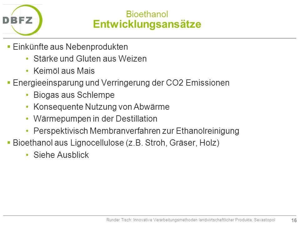 16 Runder Tisch: Innovative Verarbeitungsmethoden landwirtschaftlicher Produkte, Sevastopol Bioethanol Entwicklungsansätze Einkünfte aus Nebenprodukte