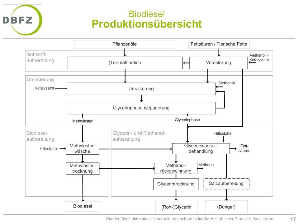 17 Runder Tisch: Innovative Verarbeitungsmethoden landwirtschaftlicher Produkte, Sevastopol Biodiesel Produktionsübersicht