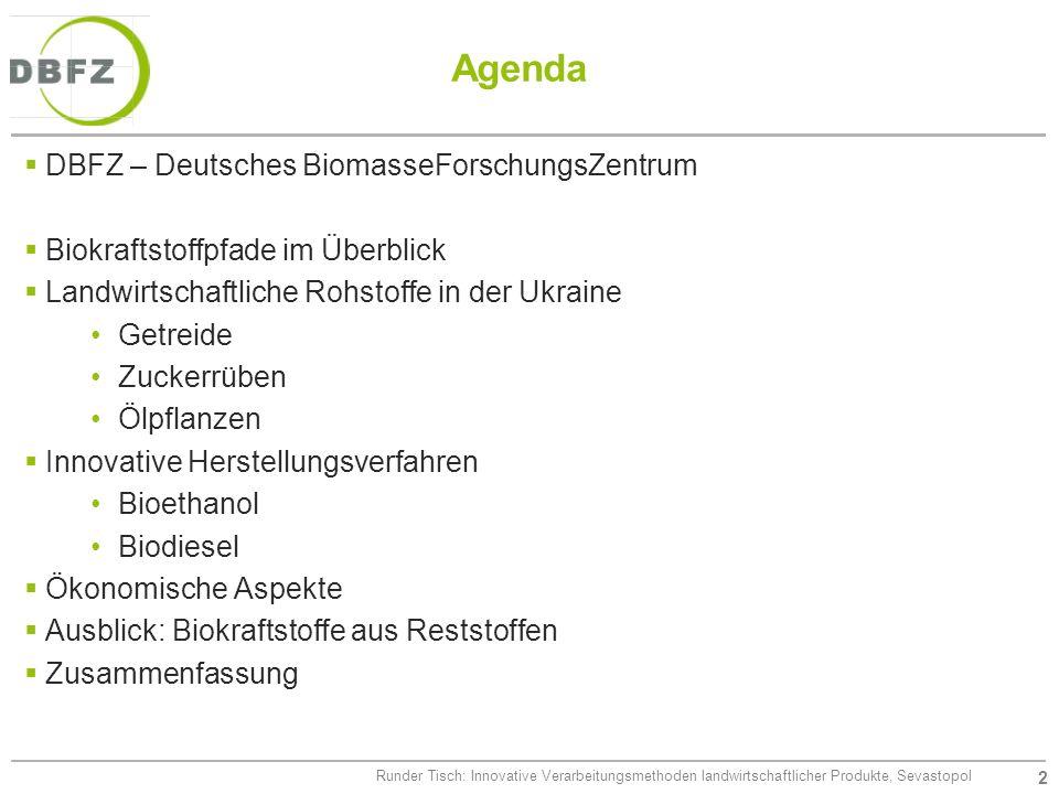 2 Runder Tisch: Innovative Verarbeitungsmethoden landwirtschaftlicher Produkte, Sevastopol Agenda DBFZ – Deutsches BiomasseForschungsZentrum Biokrafts