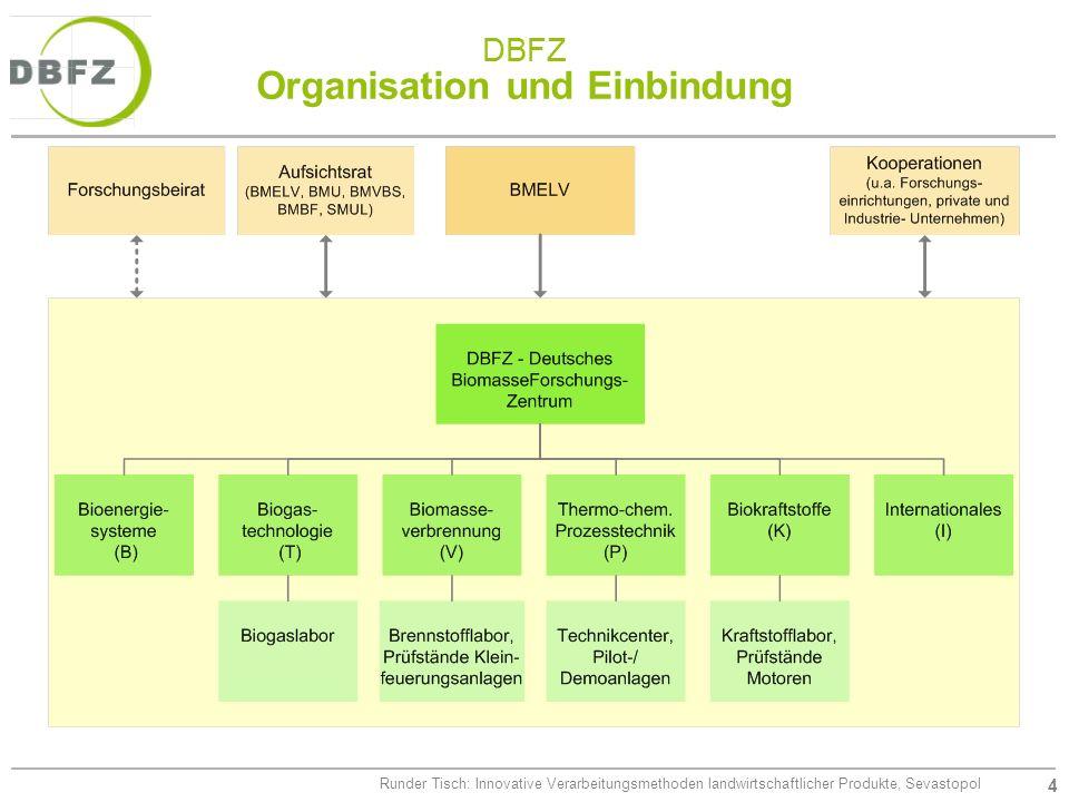 4 Runder Tisch: Innovative Verarbeitungsmethoden landwirtschaftlicher Produkte, Sevastopol DBFZ Organisation und Einbindung