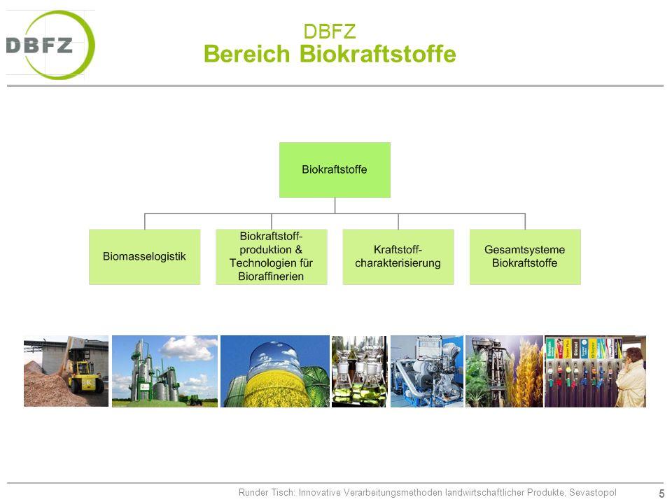 5 Runder Tisch: Innovative Verarbeitungsmethoden landwirtschaftlicher Produkte, Sevastopol DBFZ Bereich Biokraftstoffe