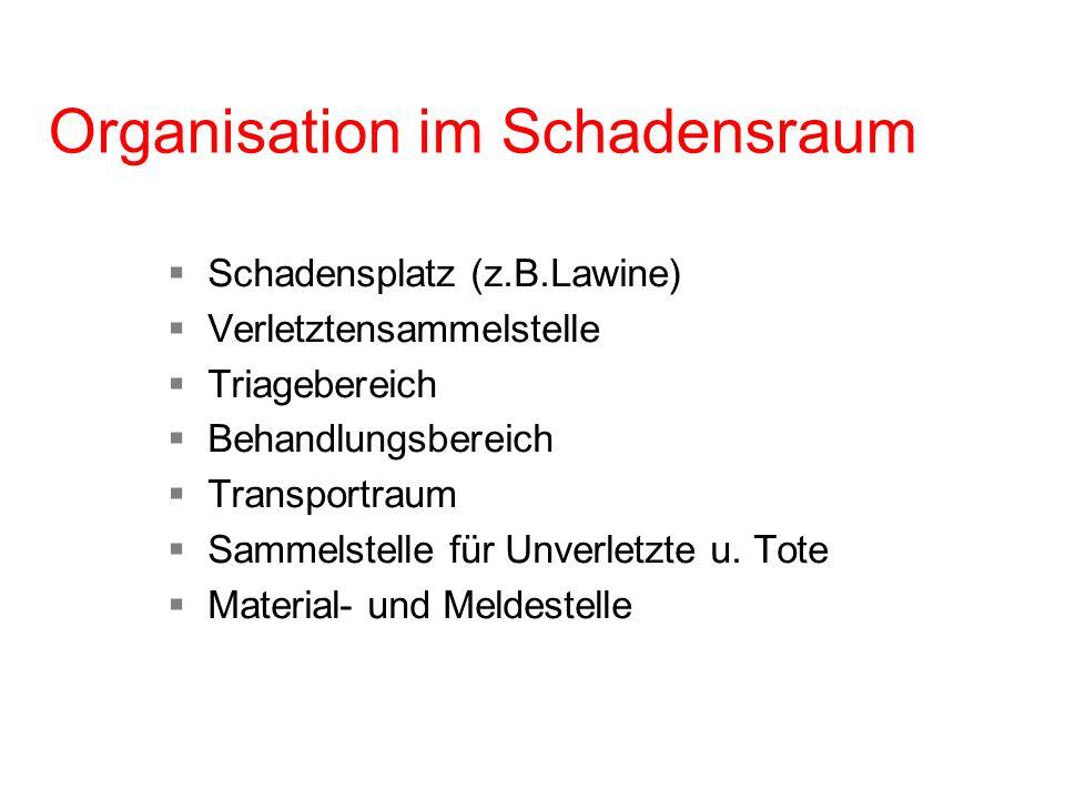 Organisation im Schadensraum Schadensplatz (z.B.Lawine) Verletztensammelstelle Triagebereich Behandlungsbereich Transportraum Sammelstelle für Unverle