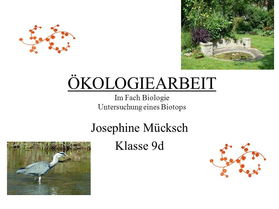 ÖKOLOGIEARBEIT Im Fach Biologie Untersuchung eines Biotops Josephine Mücksch Klasse 9d