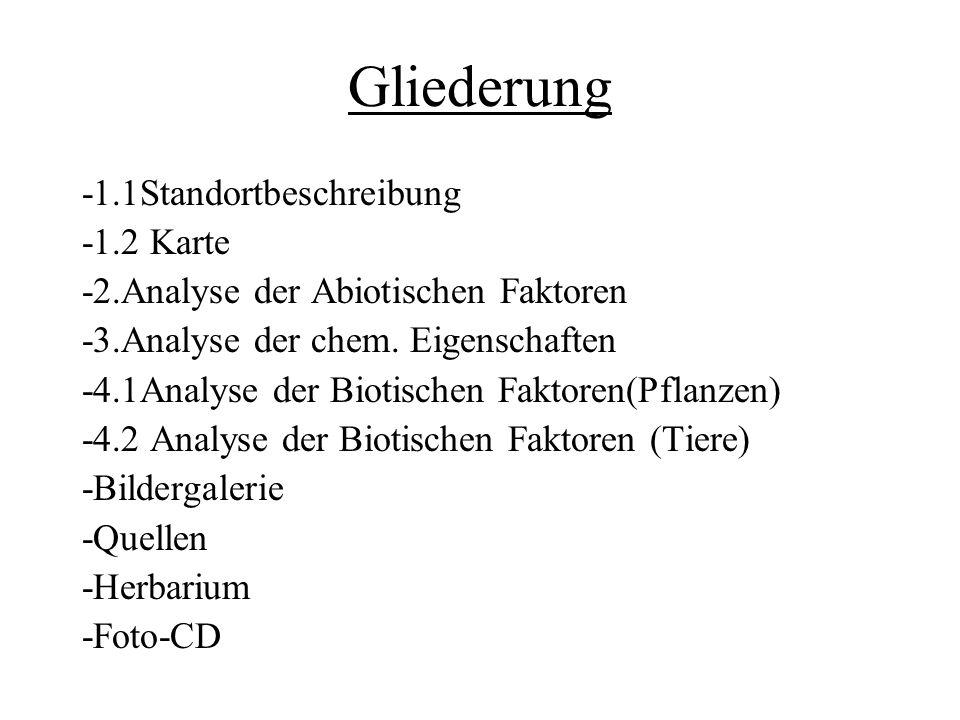 Gliederung -1.1Standortbeschreibung -1.2 Karte -2.Analyse der Abiotischen Faktoren -3.Analyse der chem. Eigenschaften -4.1Analyse der Biotischen Fakto