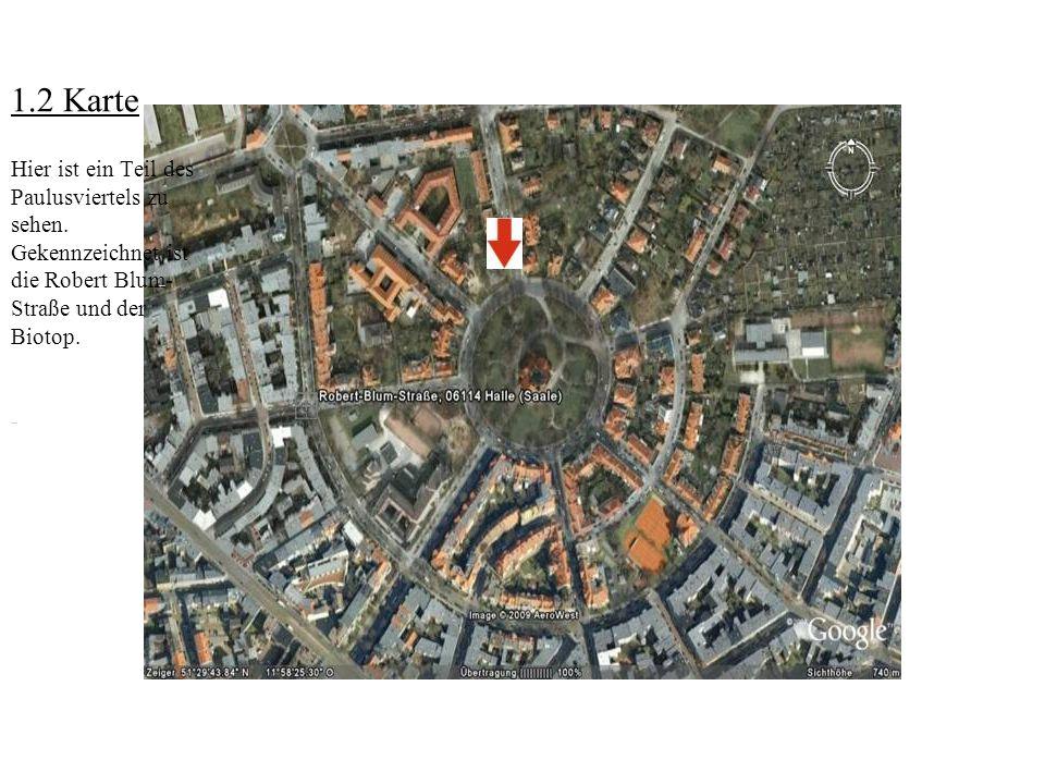 1.2 Karte Hier ist ein Teil des Paulusviertels zu sehen. Gekennzeichnet ist die Robert Blum- Straße und der Biotop.