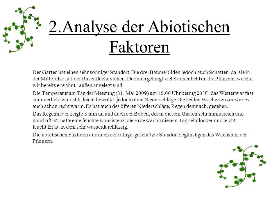 2.Analyse der Abiotischen Faktoren Der Garten hat einen sehr sonniger Standort. Die drei Bäume bilden jedoch auch Schatten, da sie in der Mitte, also
