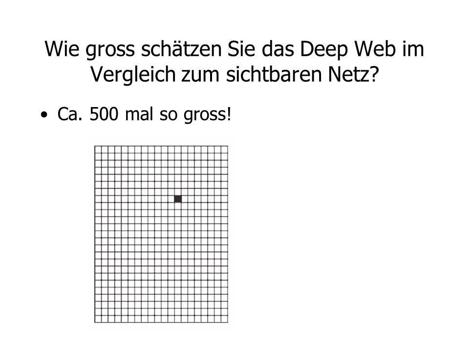 Wie gross schätzen Sie das Deep Web im Vergleich zum sichtbaren Netz? Ca. 500 mal so gross!