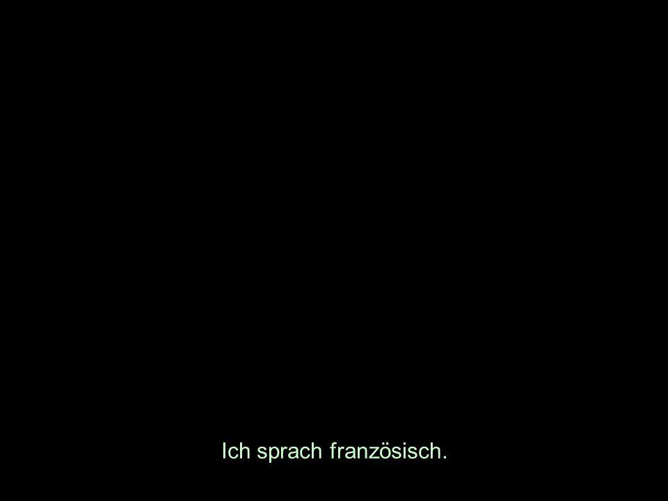 Ich sprach französisch.