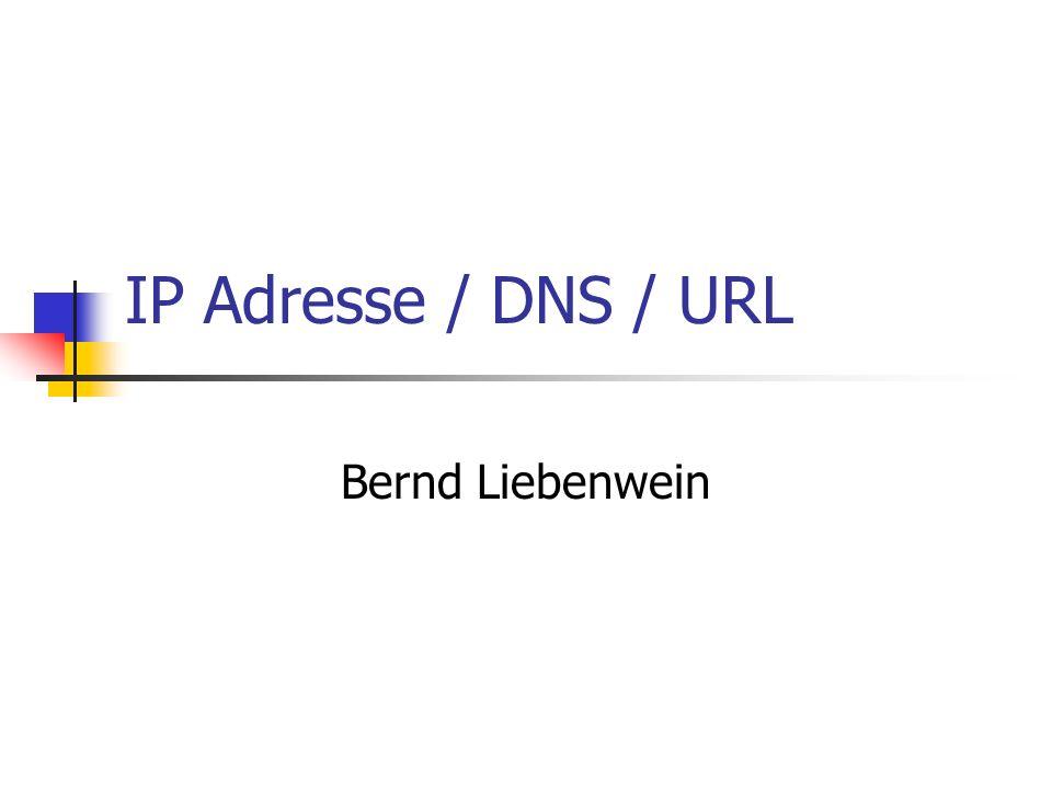 IP Adresse / DNS / URL Bernd Liebenwein