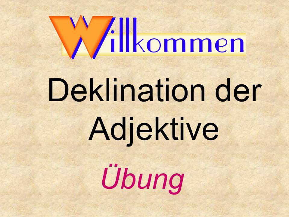 Deklination der Adjektive Übung