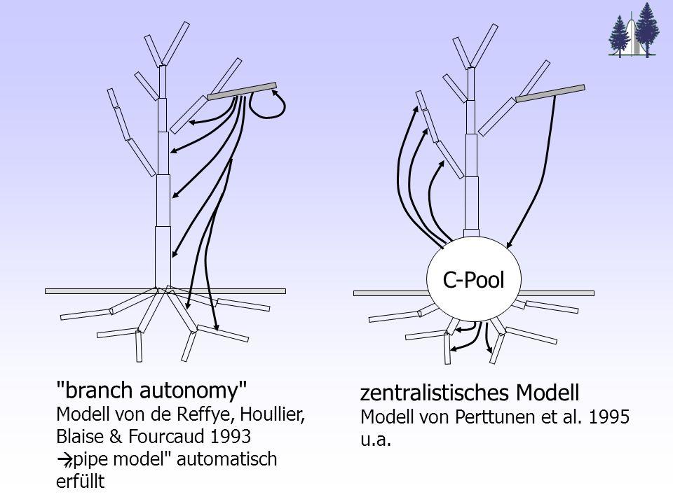 branch autonomy Modell von de Reffye, Houllier, Blaise & Fourcaud 1993 pipe model automatisch erfüllt zentralistisches Modell Modell von Perttunen et al.
