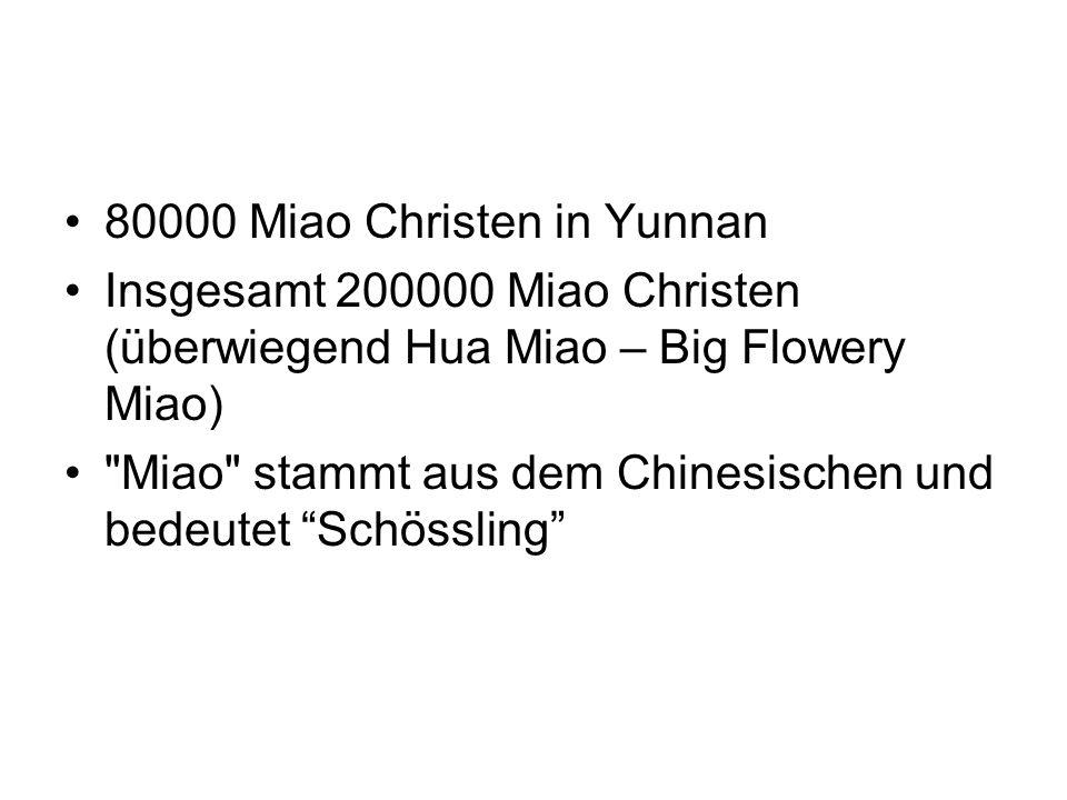 80000 Miao Christen in Yunnan Insgesamt 200000 Miao Christen (überwiegend Hua Miao – Big Flowery Miao)
