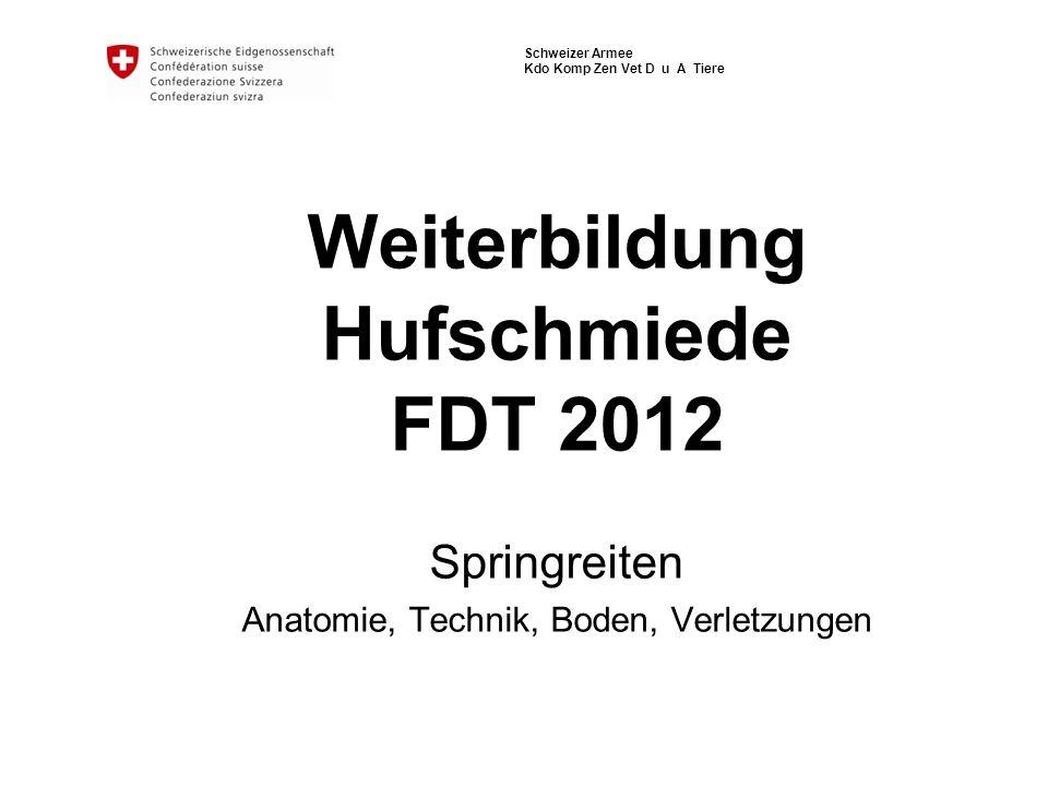 Schweizer Armee Kdo Komp Zen Vet D u A Tiere Weiterbildung Hufschmiede FDT 2012 Springreiten Anatomie, Technik, Boden, Verletzungen