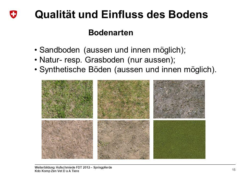 15 Weiterbildung Hufschmiede FDT 2012 – Springpferde Kdo Komp Zen Vet D u A Tiere Qualität und Einfluss des Bodens Sandboden (aussen und innen möglich