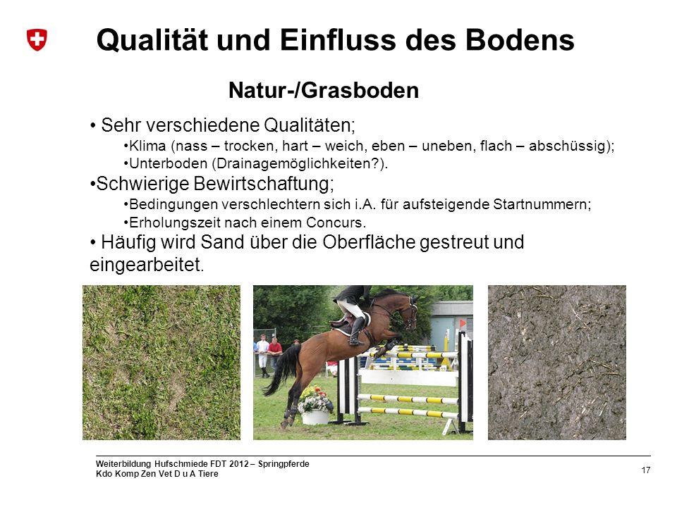 17 Weiterbildung Hufschmiede FDT 2012 – Springpferde Kdo Komp Zen Vet D u A Tiere Qualität und Einfluss des Bodens Sehr verschiedene Qualitäten; Klima