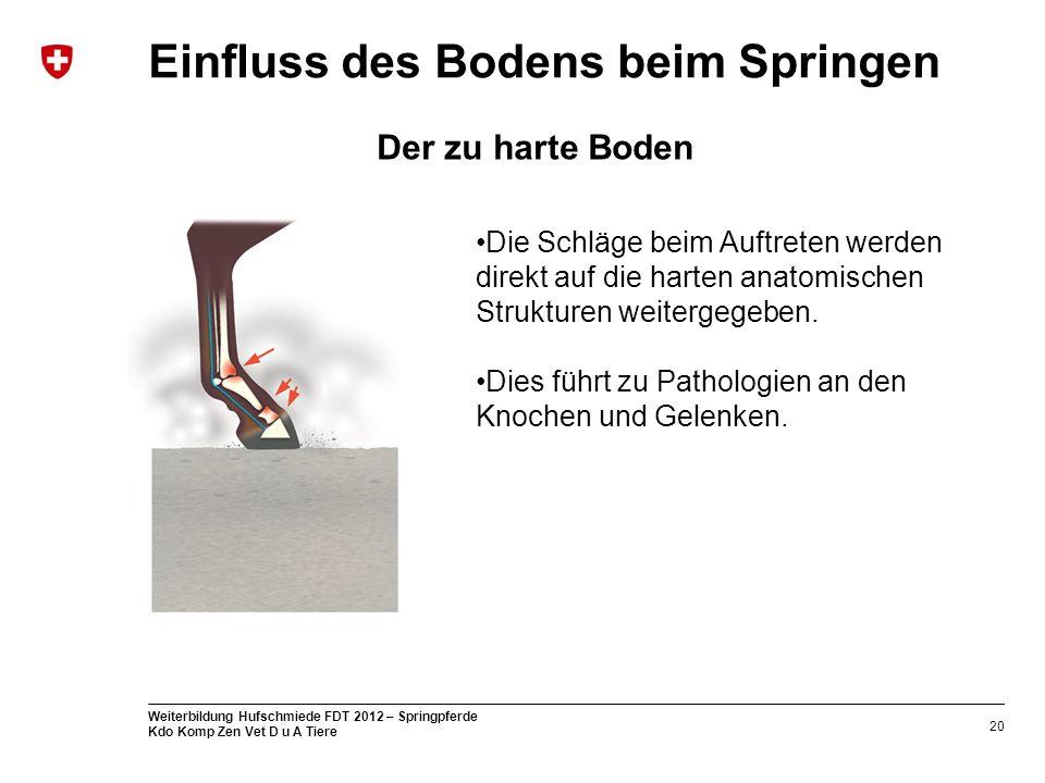 20 Weiterbildung Hufschmiede FDT 2012 – Springpferde Kdo Komp Zen Vet D u A Tiere Einfluss des Bodens beim Springen Die Schläge beim Auftreten werden