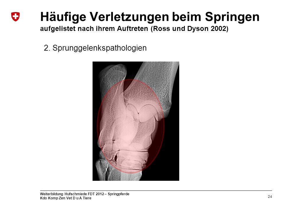 24 Weiterbildung Hufschmiede FDT 2012 – Springpferde Kdo Komp Zen Vet D u A Tiere Häufige Verletzungen beim Springen aufgelistet nach ihrem Auftreten