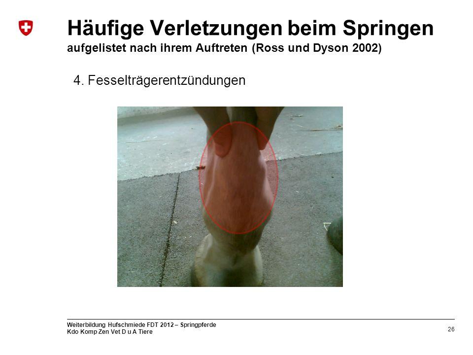 26 Weiterbildung Hufschmiede FDT 2012 – Springpferde Kdo Komp Zen Vet D u A Tiere Häufige Verletzungen beim Springen aufgelistet nach ihrem Auftreten