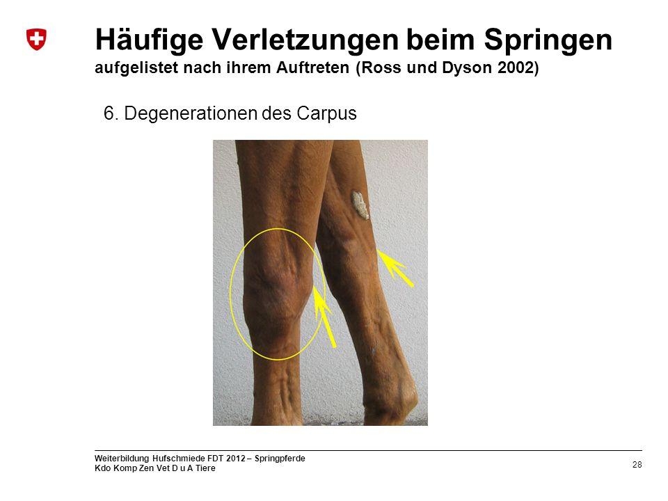 28 Weiterbildung Hufschmiede FDT 2012 – Springpferde Kdo Komp Zen Vet D u A Tiere Häufige Verletzungen beim Springen aufgelistet nach ihrem Auftreten