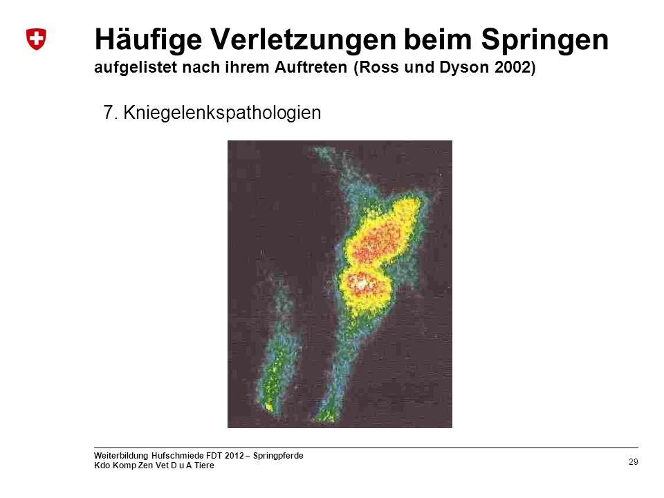 29 Weiterbildung Hufschmiede FDT 2012 – Springpferde Kdo Komp Zen Vet D u A Tiere Häufige Verletzungen beim Springen aufgelistet nach ihrem Auftreten