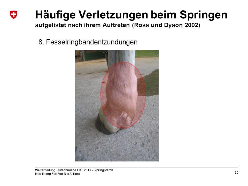 30 Weiterbildung Hufschmiede FDT 2012 – Springpferde Kdo Komp Zen Vet D u A Tiere Häufige Verletzungen beim Springen aufgelistet nach ihrem Auftreten