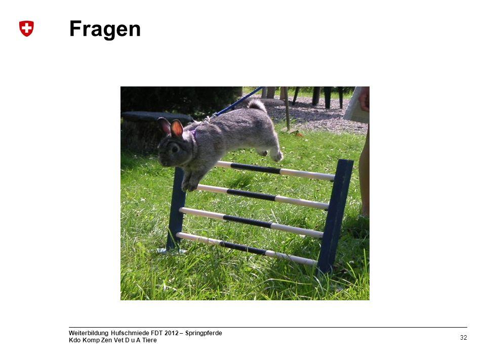 32 Weiterbildung Hufschmiede FDT 2012 – Springpferde Kdo Komp Zen Vet D u A Tiere Fragen