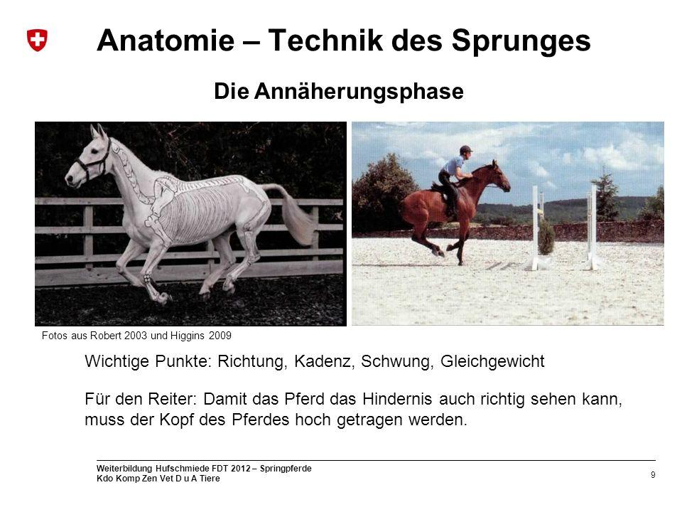 9 Weiterbildung Hufschmiede FDT 2012 – Springpferde Kdo Komp Zen Vet D u A Tiere Anatomie – Technik des Sprunges Die Annäherungsphase Wichtige Punkte: