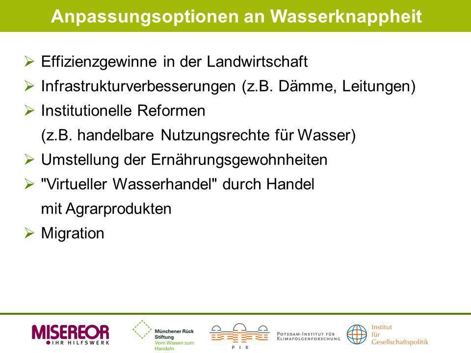 Anpassungsoptionen an Wasserknappheit Effizienzgewinne in der Landwirtschaft Infrastrukturverbesserungen (z.B. Dämme, Leitungen) Institutionelle Refor