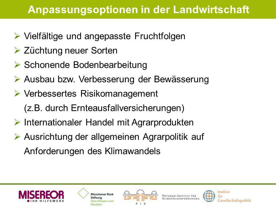 Anpassungsoptionen in der Landwirtschaft Vielfältige und angepasste Fruchtfolgen Züchtung neuer Sorten Schonende Bodenbearbeitung Ausbau bzw. Verbesse