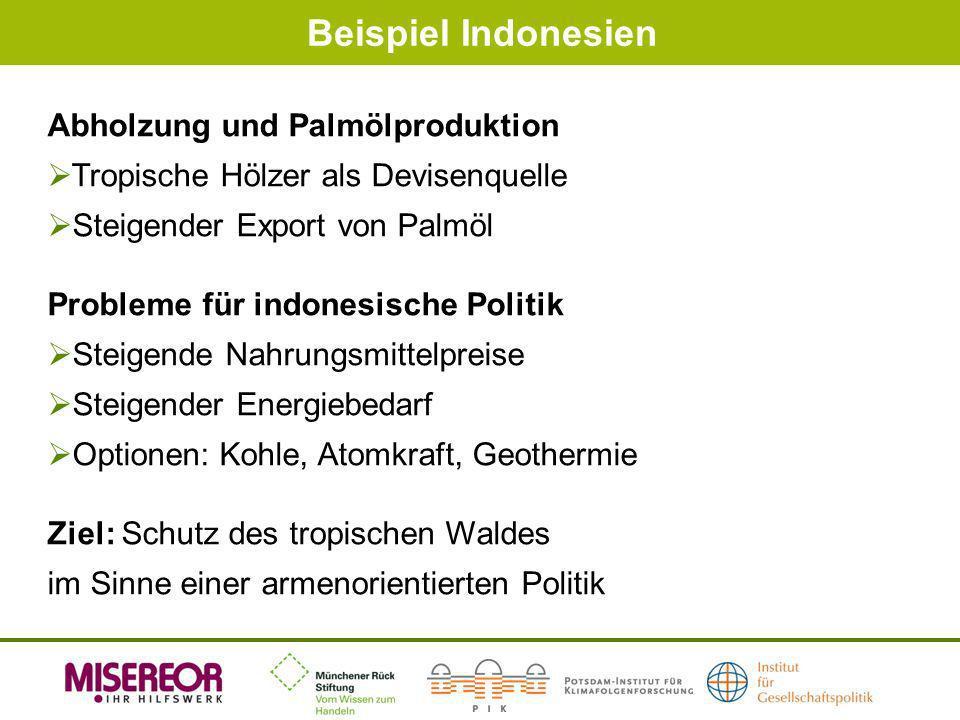Beispiel Indonesien Abholzung und Palmölproduktion Tropische Hölzer als Devisenquelle Steigender Export von Palmöl Probleme für indonesische Politik S