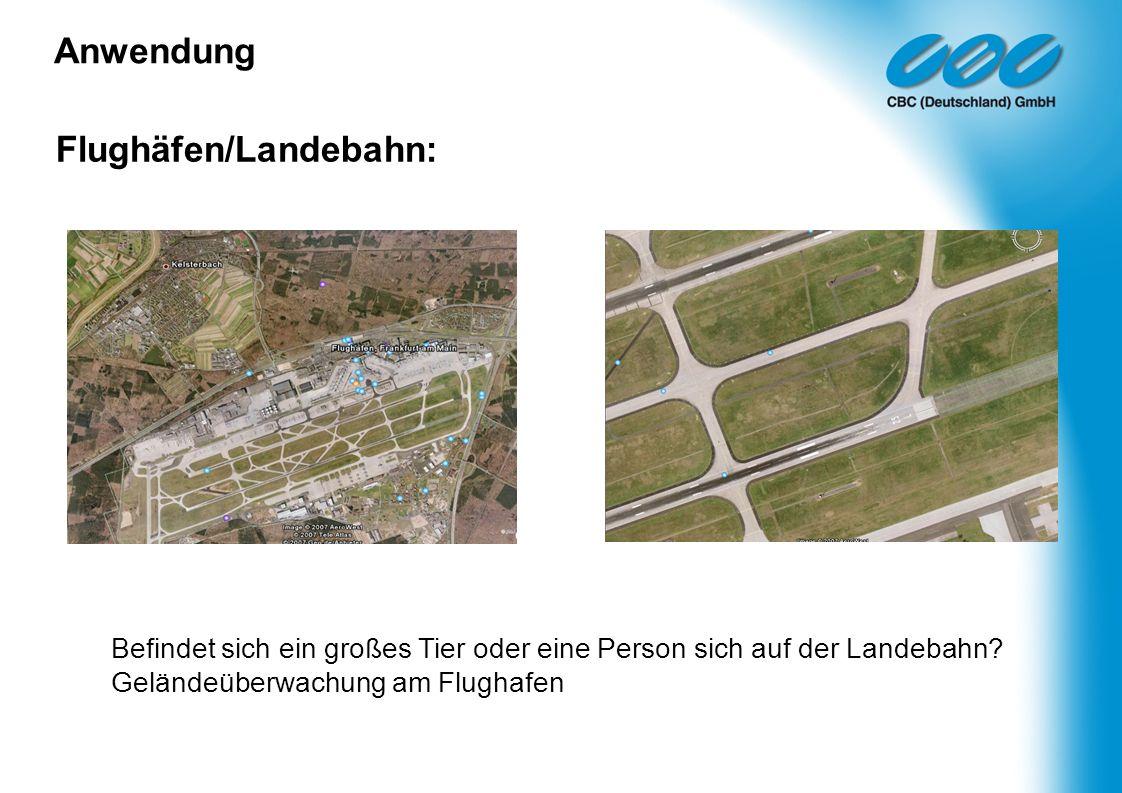 Flughäfen/Landebahn: Anwendung Befindet sich ein großes Tier oder eine Person sich auf der Landebahn? Geländeüberwachung am Flughafen