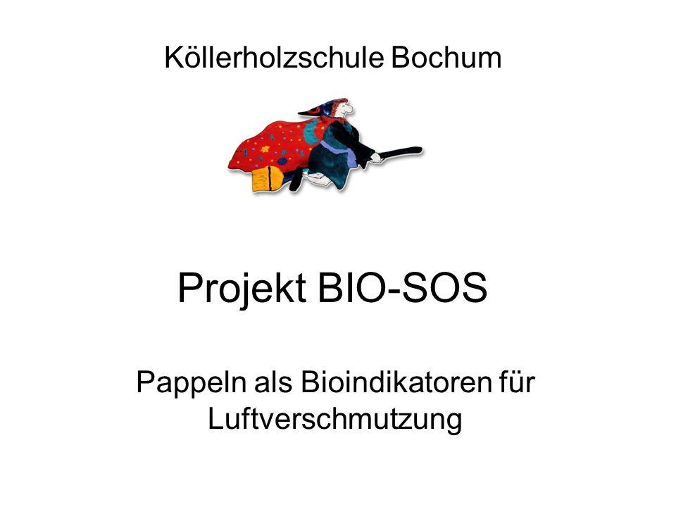 Projekt BIO-SOS Pappeln als Bioindikatoren für Luftverschmutzung Köllerholzschule Bochum