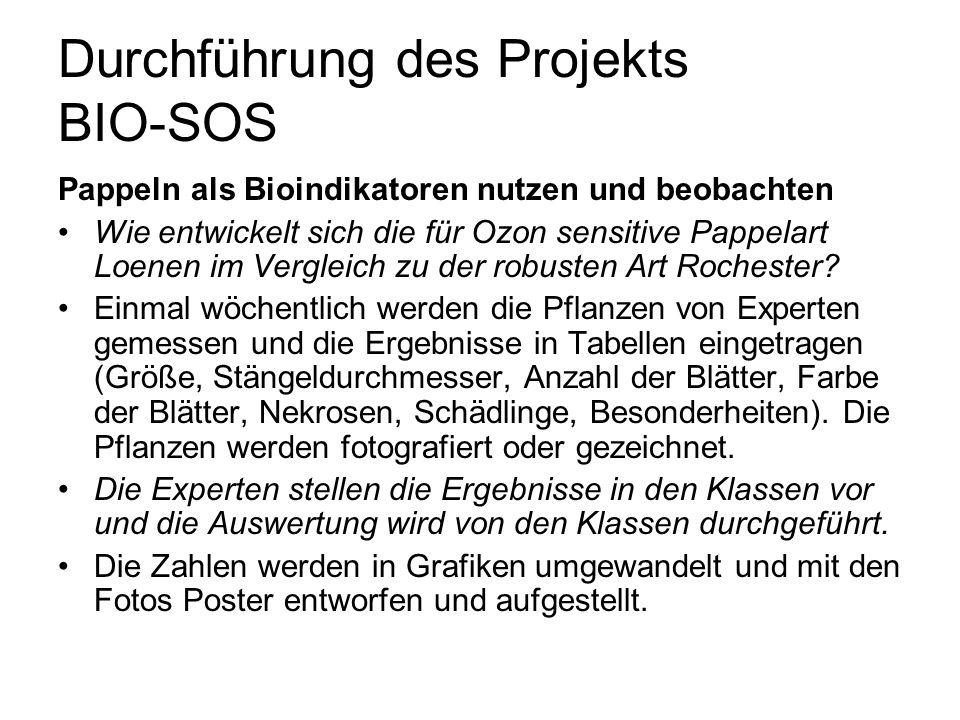Durchführung des Projekts BIO-SOS Pappeln als Bioindikatoren nutzen und beobachten Wie entwickelt sich die für Ozon sensitive Pappelart Loenen im Verg